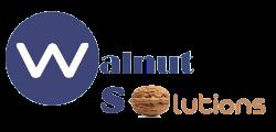 SEO Expert Scholarship Program by Walnut Solutions